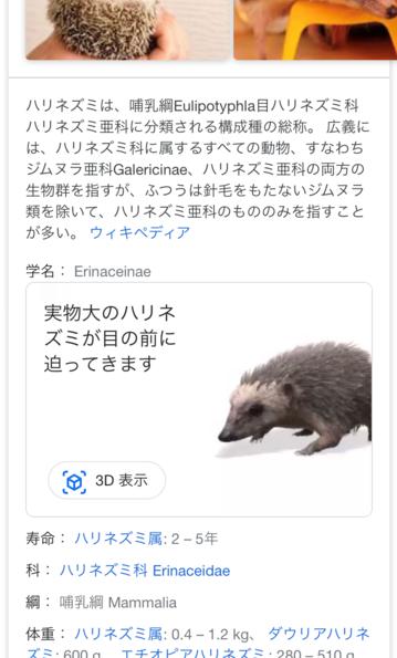 Googleの動物検索