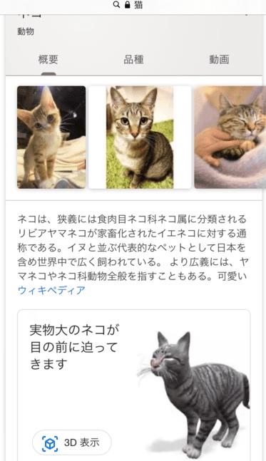 Googleでの猫の検索結果