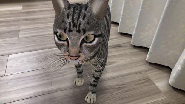 ARで室内に登場した猫